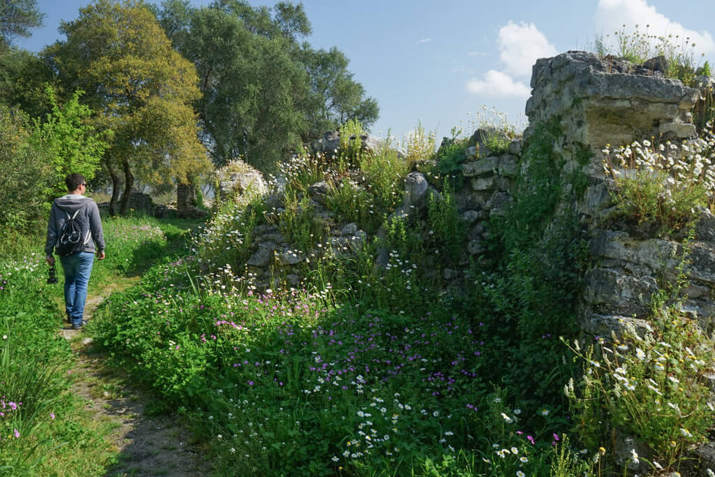 Mit Blumen und Gras überwachsene Mauern, Ruinenstadt Butrint Albanien Reisen