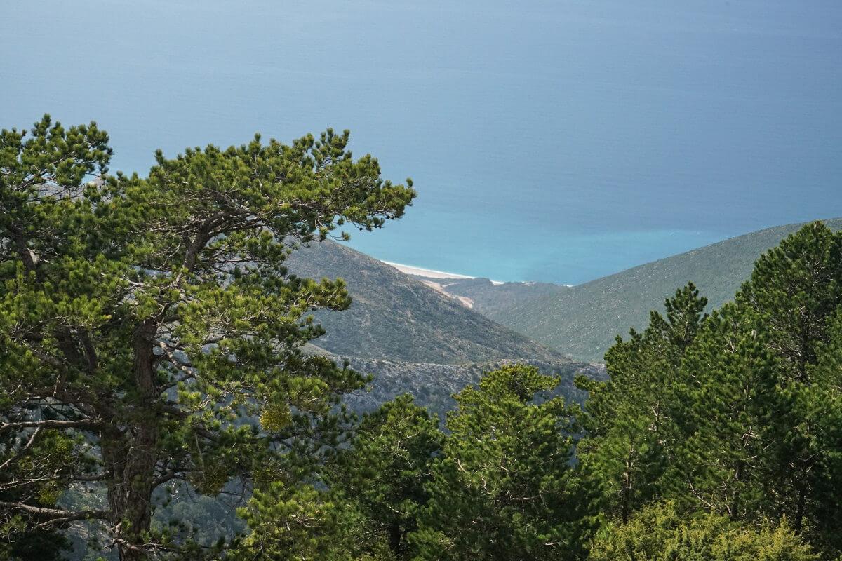 Bäume, Meer, Strand, Llogara-Pass, Albanien Reisen