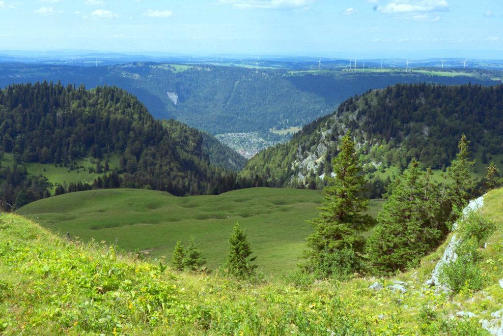Aussicht hinunter ins bewaldete Tal - Wandern Schweiz