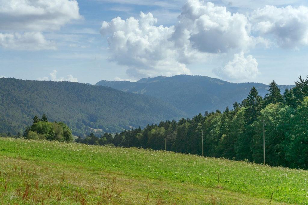 Felder, weite Wälder und die Handyantenne vom Chasseral - Wandern in der Schweiz / Kurztrip Schweiz
