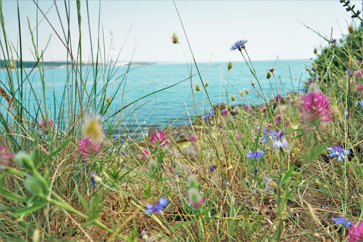 Bulgarien Sozopol Wandern Strand