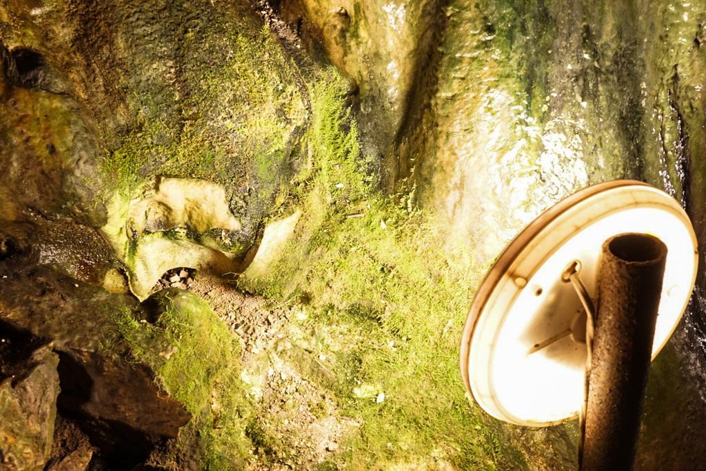Magura Höhle