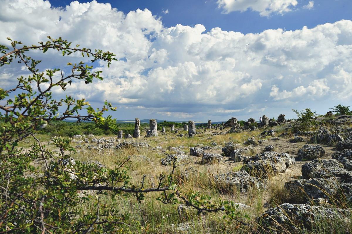 Steinwald in Bulgarien - eine spannende Sehenswürdigkeit