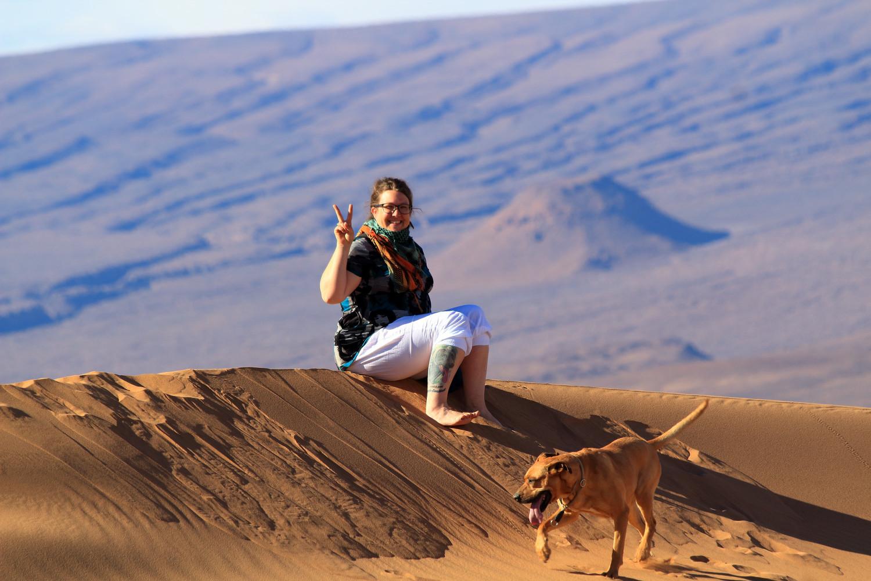 Sanddüne und Hund