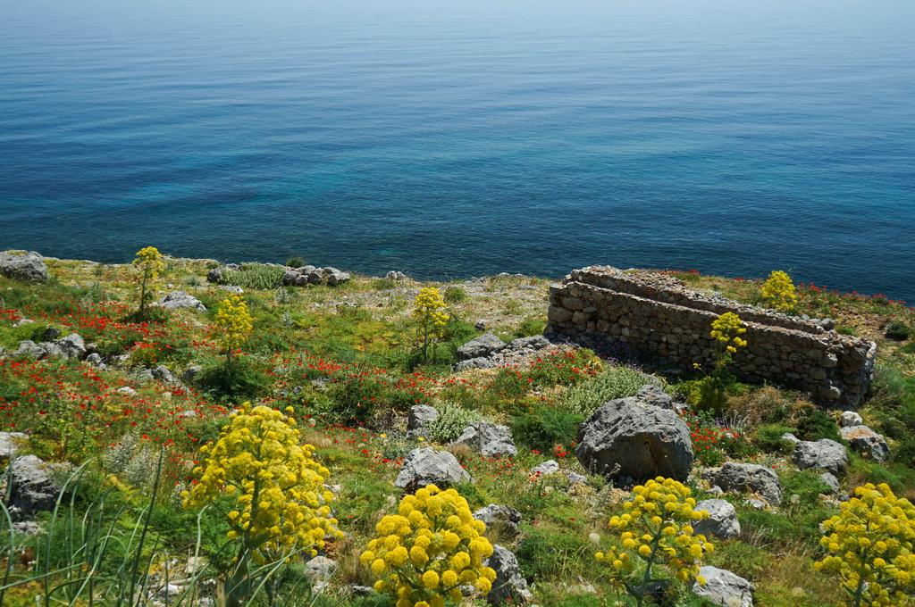Gelbe, rote Blumen und viel Grün dahinter Meer türkis - Monemvasia besichtigen