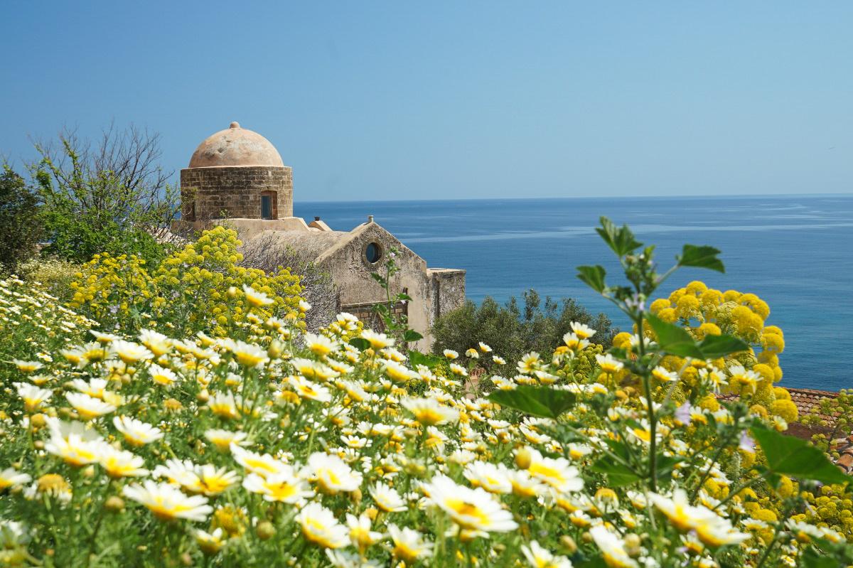 Margeriten dahinter Kuppel von Kloster und Meer - Monemvasia besichtigen