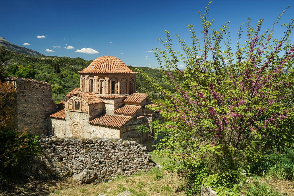 Strauch mit violetten Blumen, Kirche, Mystras