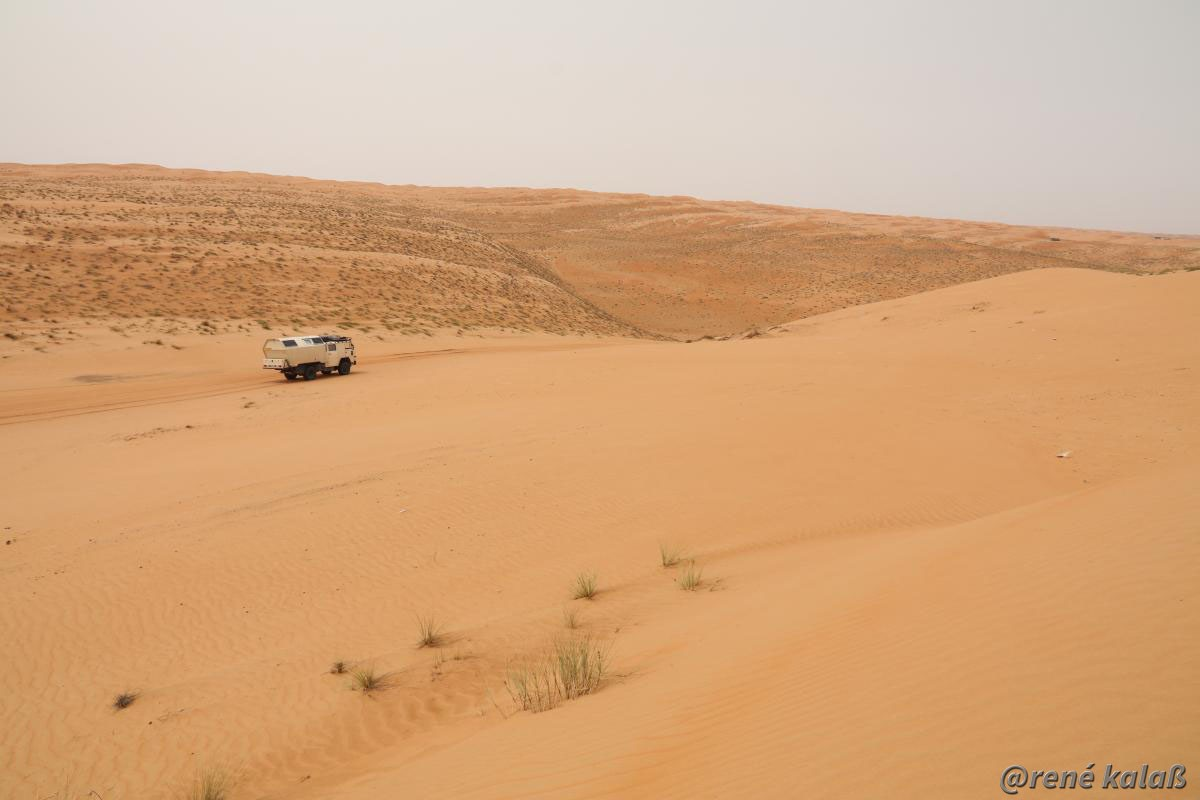 Hummel im Sand