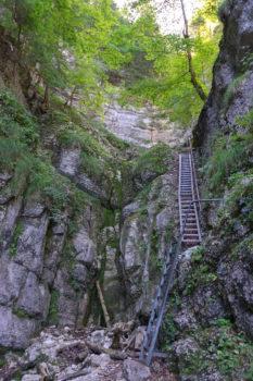 steile Treppen der Felsen entlang - Wandern in der Schweiz / Kurztrip Schweiz