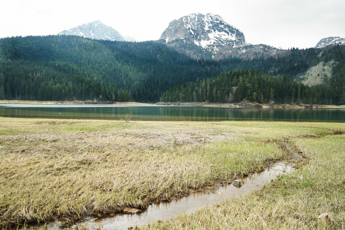 See, Wiese, Bach, Wald und Bergspitzen mit Schnee - mehr braucht ein gutes Bild nicht. Wandern im Durmitor Naitonalpark in Montenegro
