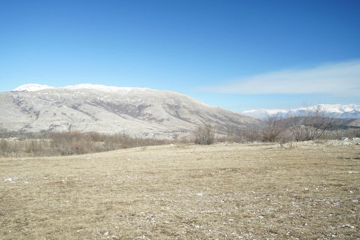 Grasebene mit Büschen, blauem Himmel und Bergen im Hintergrund - Wildpferde in Bosnien-Herzegowina