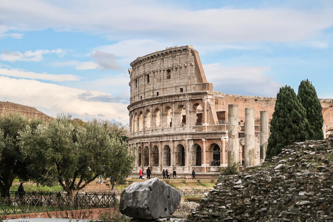 Olivenbäume dahinter das Kolosseum - Sehenswürdigkeiten Rom