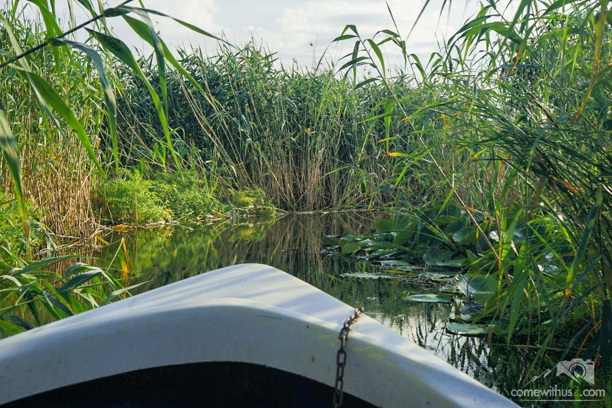 Donaudelta mit kleinem Boot erkunden