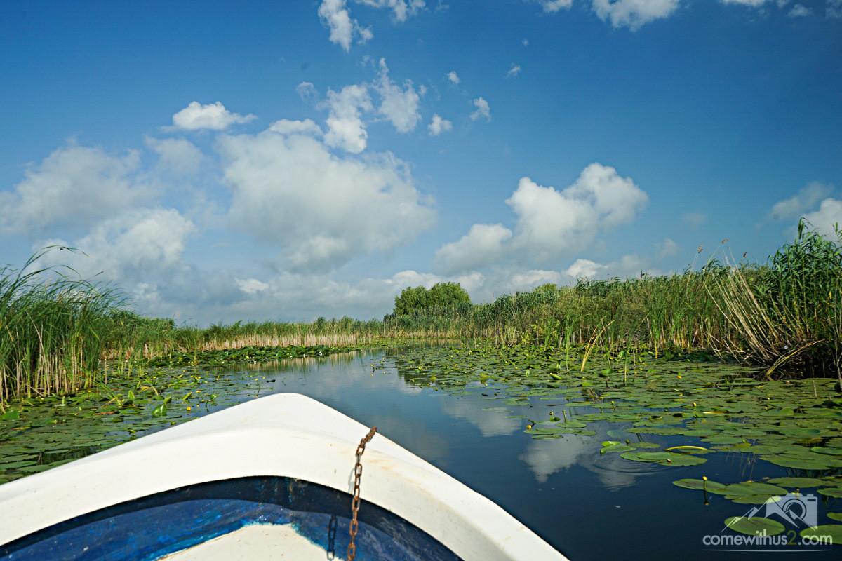 Bootsfahrt Donaudelta 3 Stunden Tour
