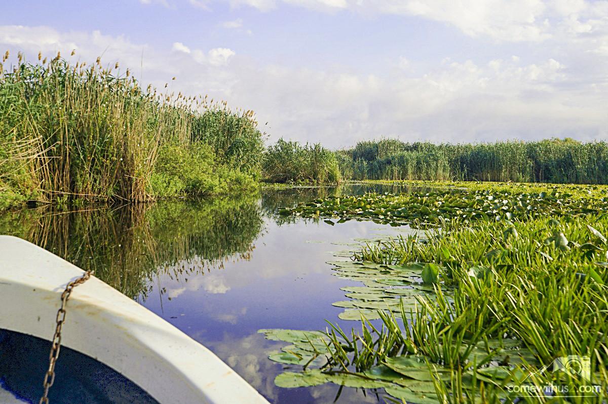 Bootstour durch das Donaudelta - einmaliges Erlebnis