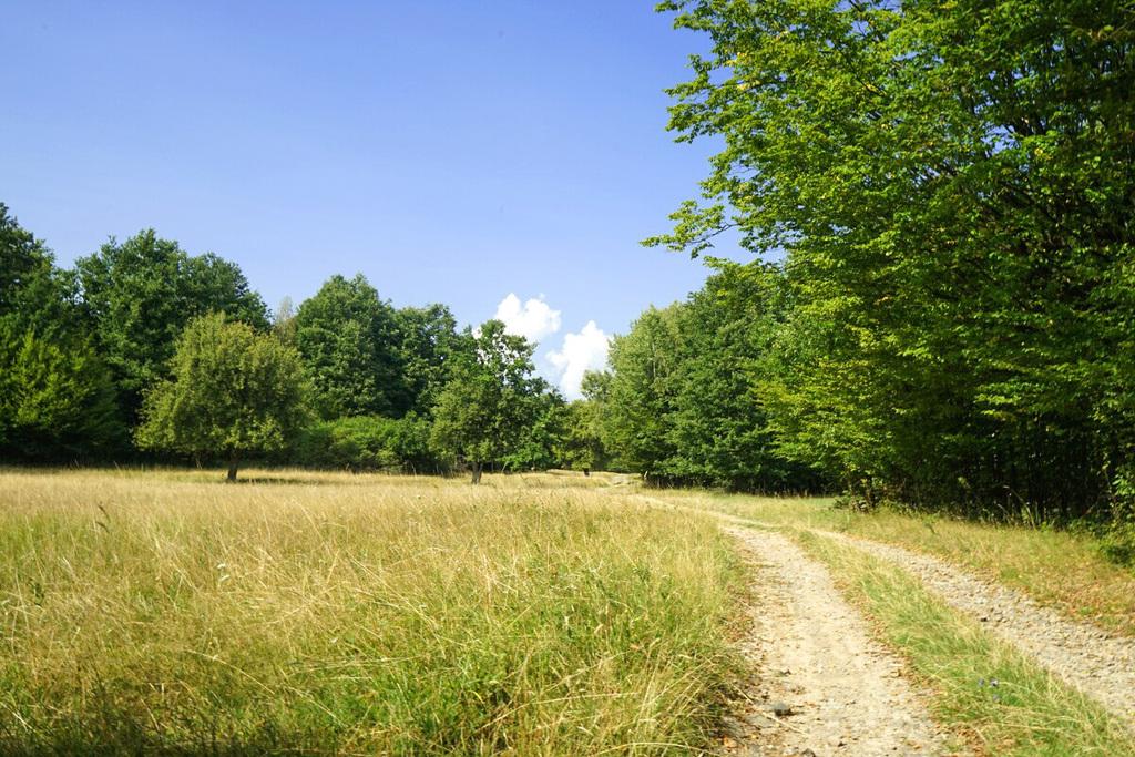 Wandern Slowakei