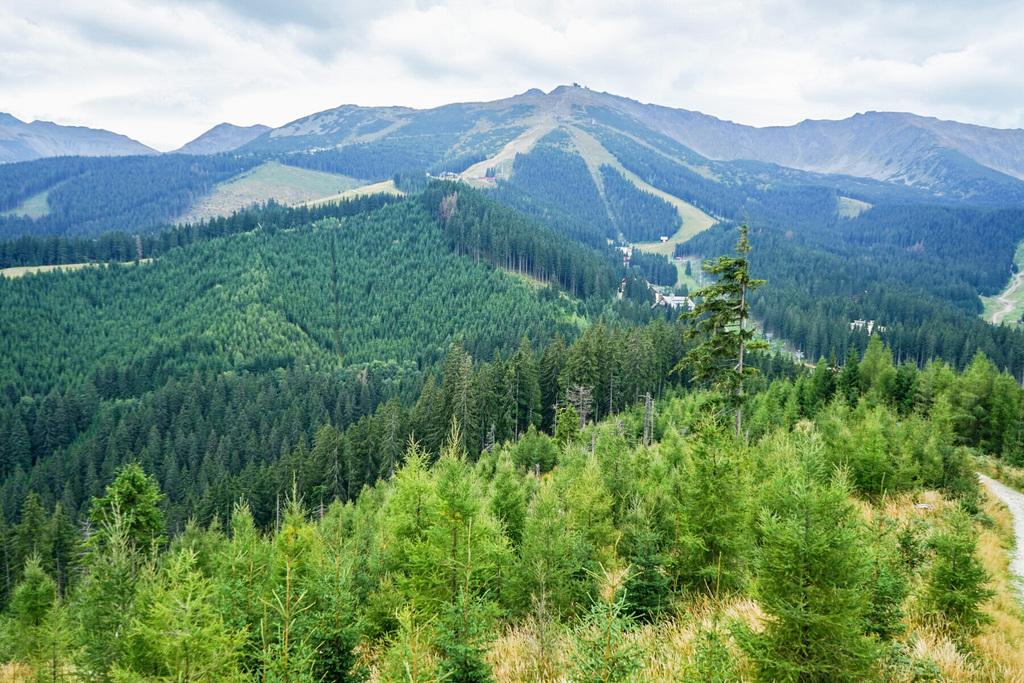 Wanderung Grat Chopok Slowakei