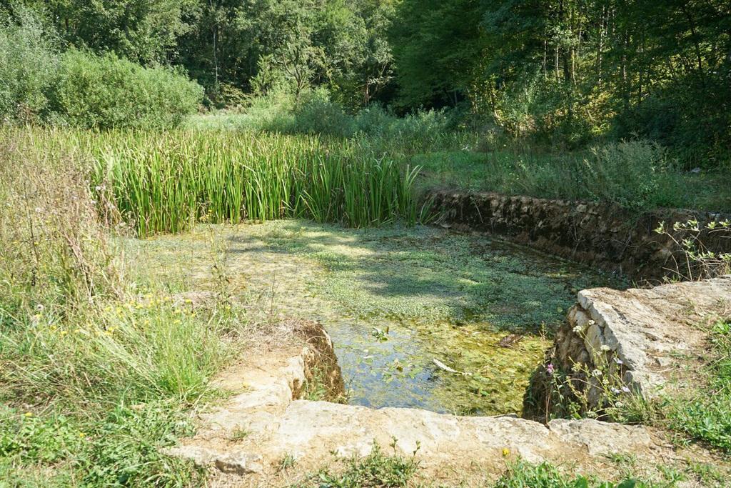 Slowenien Bela Krajina Lahinja Quelle