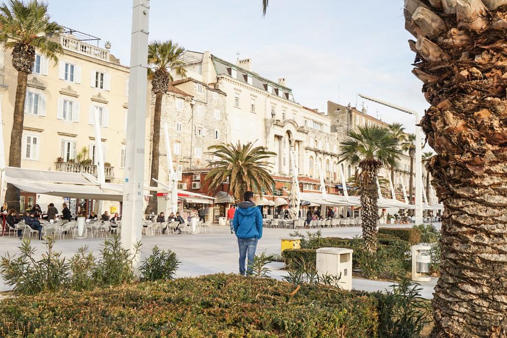 Häuserfront, Palmen, Lui von hinten - Split, Sehenswürdigkeiten Kroatien