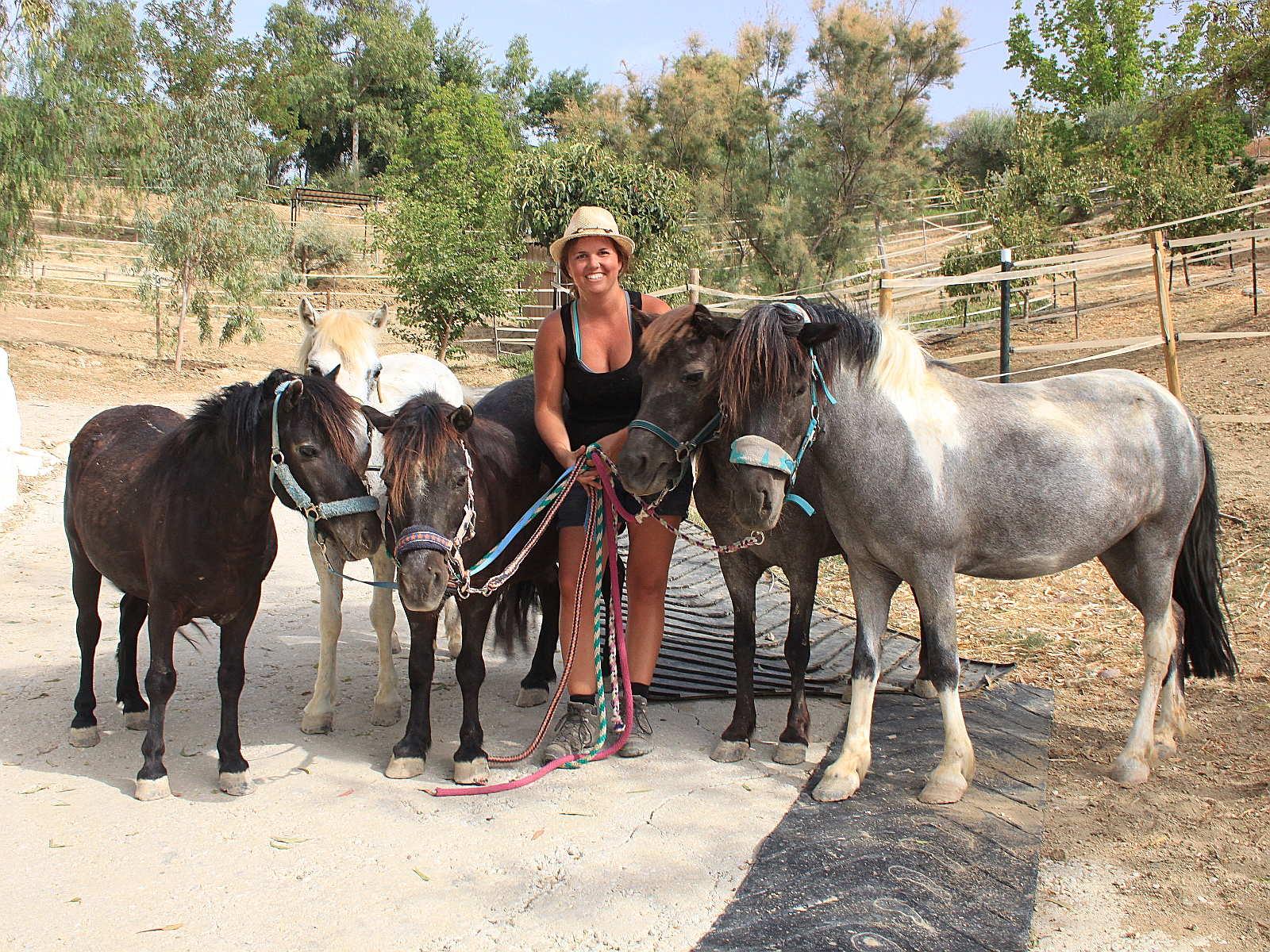 Steffi inmitten von fünf Ponys an Halftern - Freiwilligenarbeit