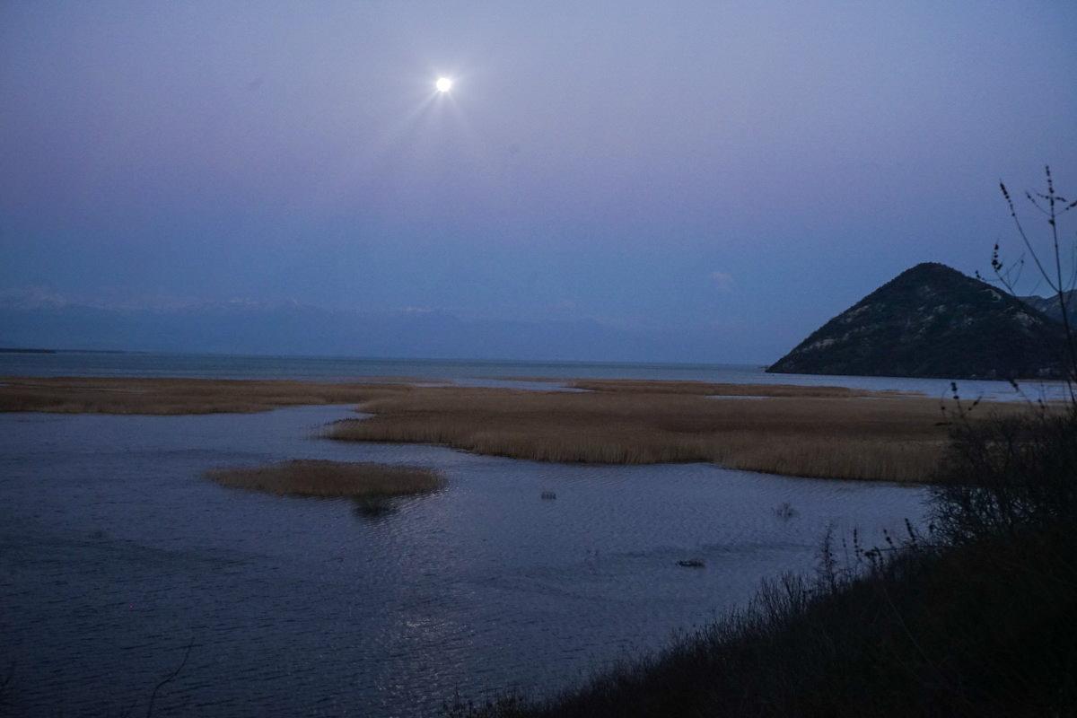 Vollmond, Schilf und See in schwachem Licht Wandern in Montenegro, Virpazar, Skradar See