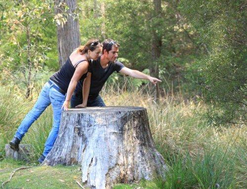 Reisen als Paar – kann das gut gehen?