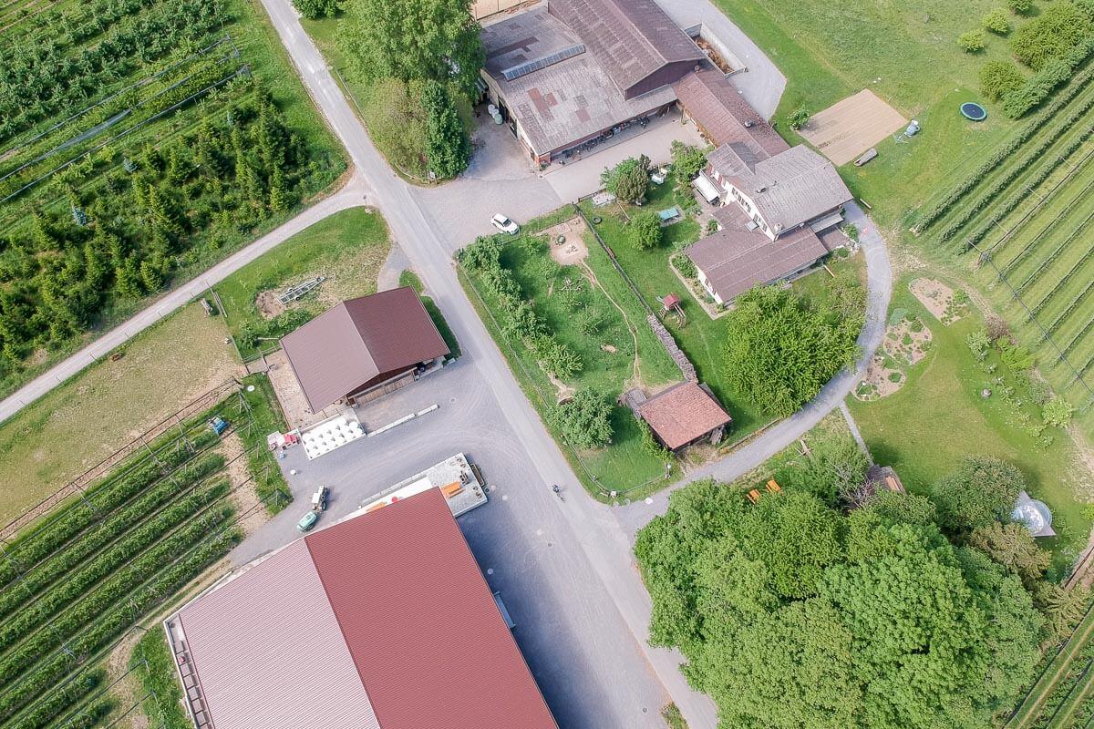 Feierlenhof: Ausflugsziel für Jung und Alt in Altnau