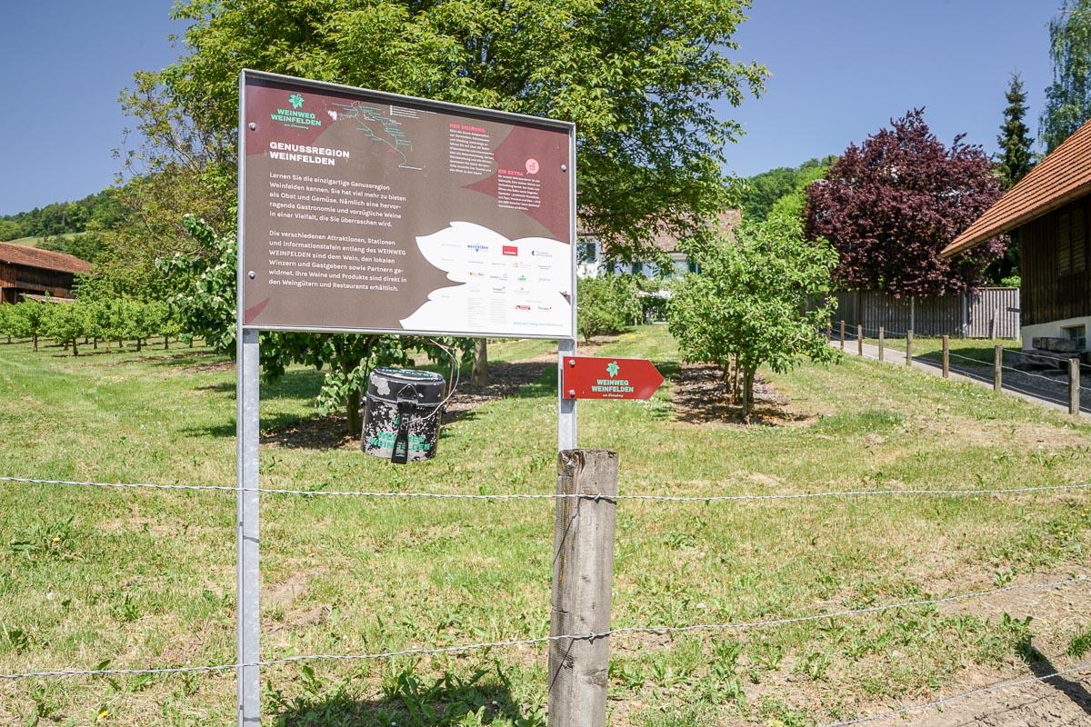 Weinweg Weinfelden: Startpunkt Restaurant