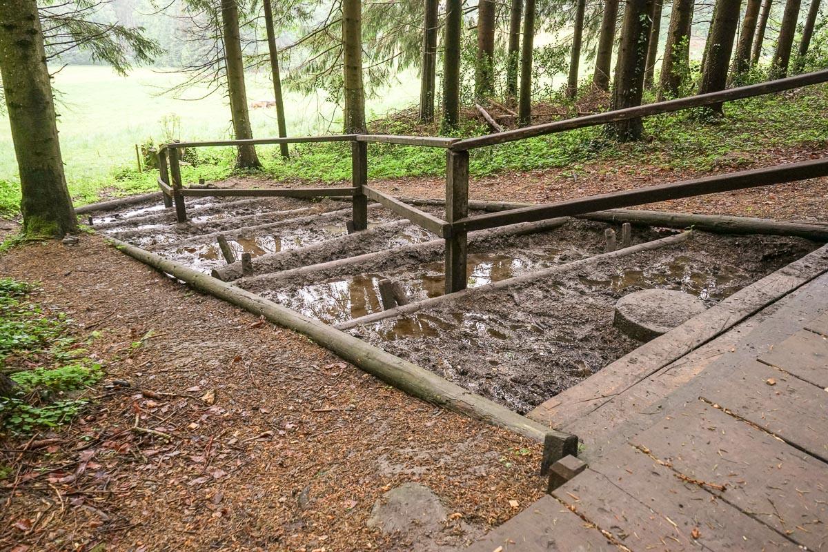Wellness für die Füsse im Thurgau: Barfussweg