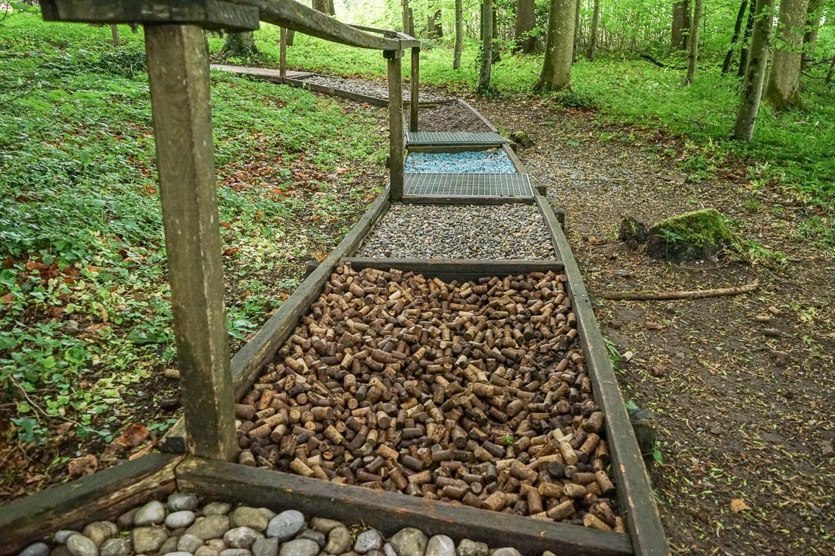Familienspaziergang und Wanderung im Thurgau: Barfussweg