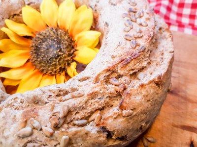 Rezept und Anleitung: Brot backen im Omnia