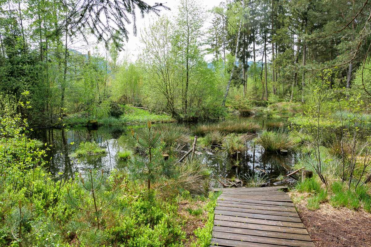 Wandern Süddeutschland - Chiemsee - Campingurlaub