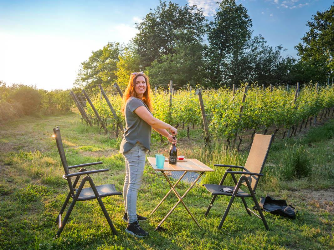 Grillen in den Weinreben vom Weingut - Agricamper Italia